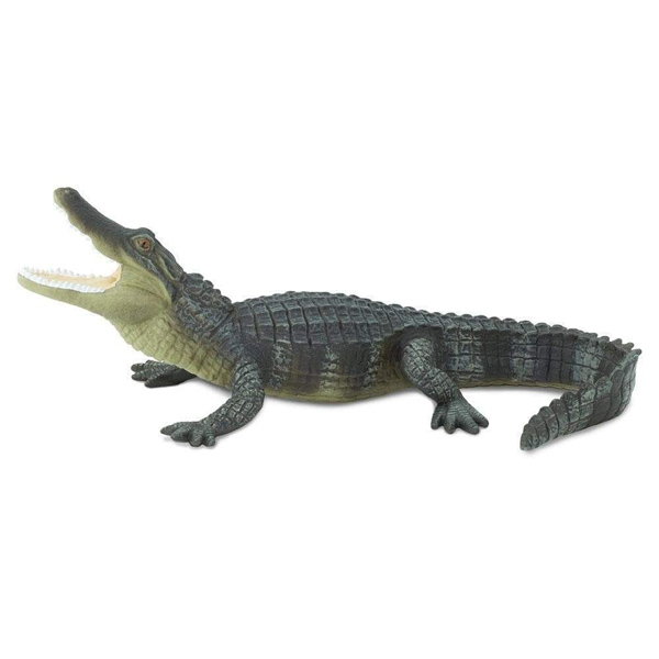 ALLIGATOR REPLICA
