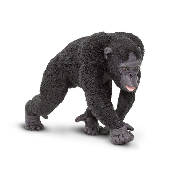 CHIMPANZEE REPLICA